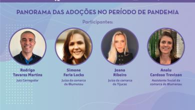 Foto de Panorama das adoções no período de pandemia será tema de live promovida pela Ceja